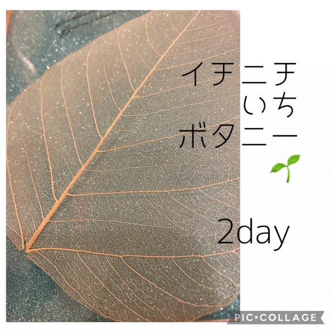 2day ✨菩提樹の葉とラメ✨